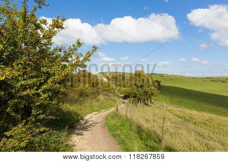 Path to Ivinghoe Beacon Chiltern Hills Buckinghamshire England UK English countryside