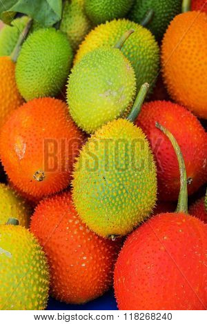 Gac Fruit (Momordica cochinchinensis) is a Southeast Asian fruit found throughout the region from Southern China to Northeastern Australia, including Thailand, Laos, Myanmar, Cambodia and Vietnam.