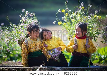 Unidentified ethnic minority kids in a field of rapeseed flower in Hagiang, Vietnam