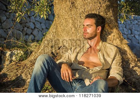 Man Relaxing in Warm Sunlight at Base of Tree