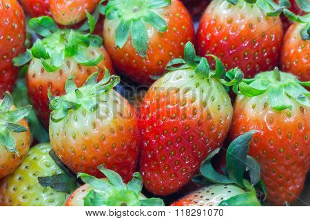 Close Up Of Group Of Fresh Red Strawberry