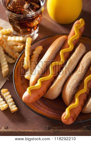 grilled hot dogs with mustard and french fries