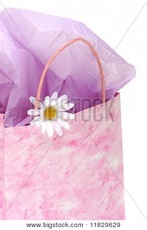 Pink gift bag isolated on white background
