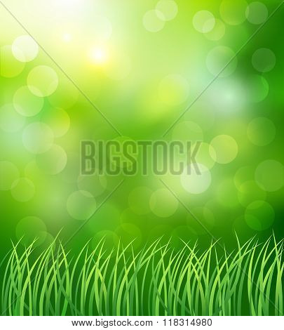 Spring background with green grass. Vector illustration.