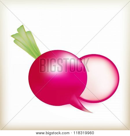 garden radish, radish, root crop, food, vegetable