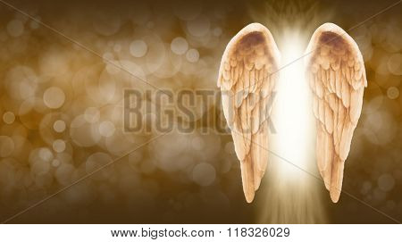 Golden Angel Wings on golden brown Bokeh Banner