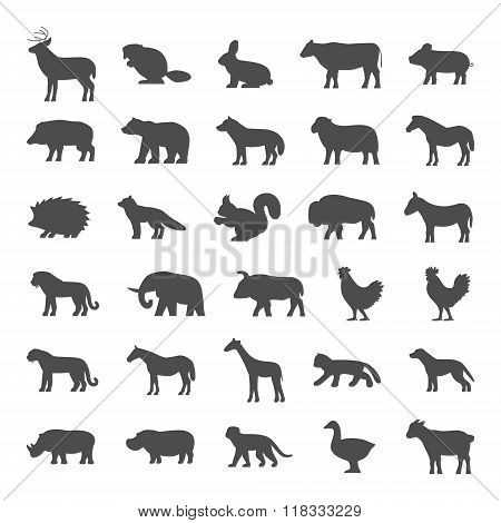 Set Of Domestic And Wild Animals On A White Background.