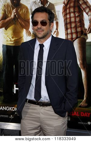 Director Todd Phillips at the Los Angeles premiere of 'The Hangover Part II' held at the Grauman's Chinese Theatre in Hollywood, USA on May 19, 2011.