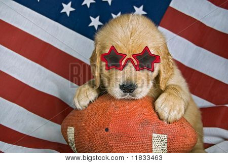 retriever on football