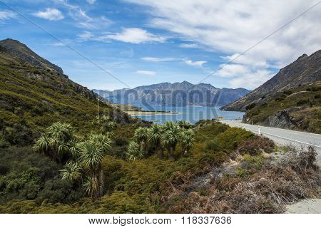 A roadtrip in New Zealand: Haast Pass Highway to Wanaka