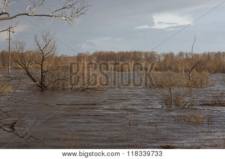 trees under water. flood inundation windy sunny weather. spring. Siberia. Russia