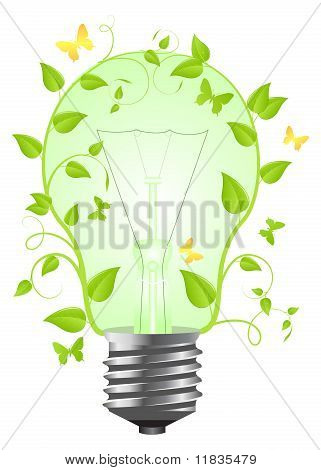 Bulb With Plant