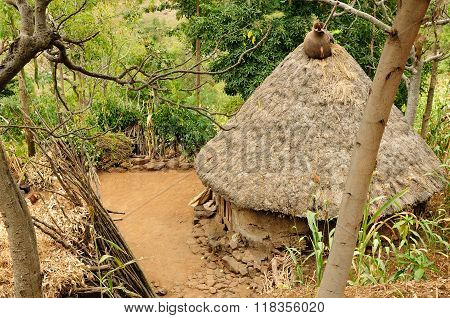 Ethiopian Village In Omo Valley