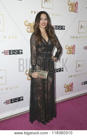 LOS ANGELES - FEB 14:  Nadine Velasquez at the Primary Wave 10th Annual Pre-GRAMMY Party at the London West Hollywood on February 14, 2016 in West Hollywood, CA