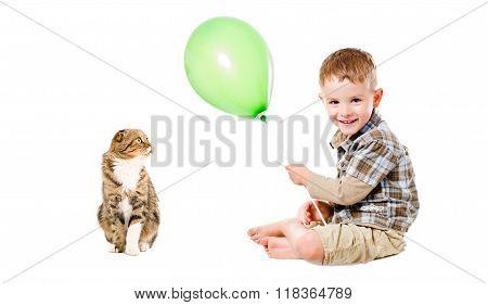 Happy child and cat Scottish Fold
