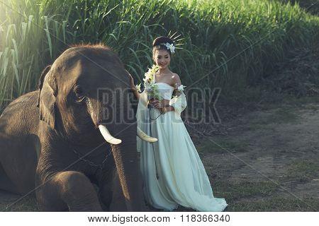 Women With Elephant