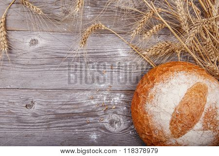 Freshly baked white bread with a crispy golden brown and golden spikelets on wooden texture board
