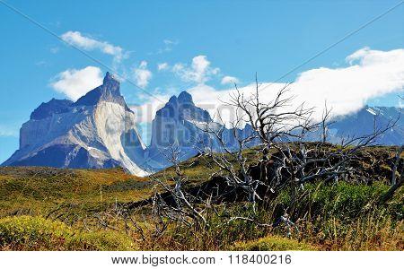 Torres del Paine National Park W-Trek