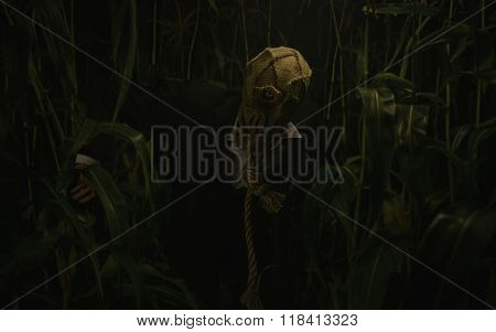 Halloween Scarecrow, Killer In The Forest