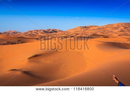 Desert Dune At Erg Chebbi Near Merzouga In Morocco.