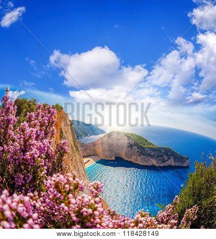 Navagio Beach With Shipwreck And Flowers Against Blue Sky On Zakynthos Island, Greece