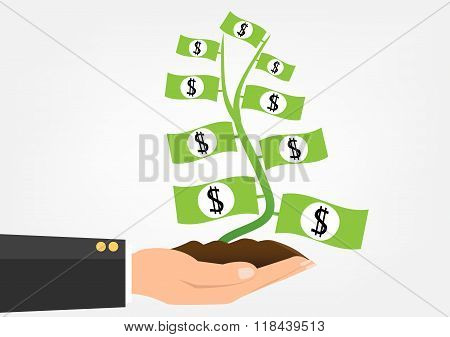 Money Plant Banknote Grow On Businessman Hand Holding. Vector Illustration Flat Desing Business Inve