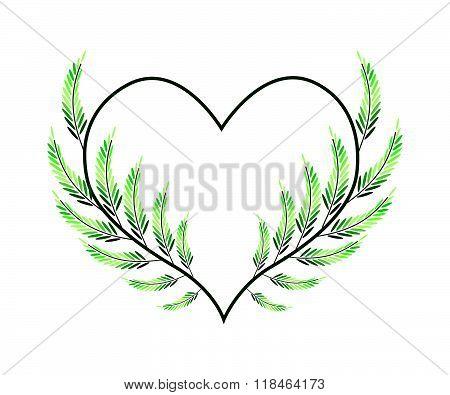Lovely Green Vine Leaves In A Heart Shape