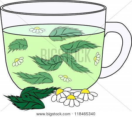 reen tea with a mint and camomile