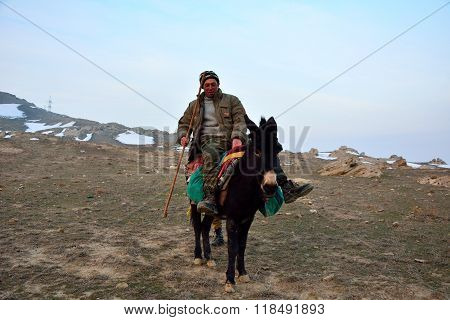 Azerbaijani shepherd on mule