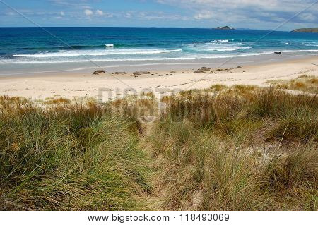 White Sand Beach Sea Coast In Outback Of New Zealand
