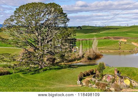 View Of The Village In Hobbiton, Matamata, New Zealand