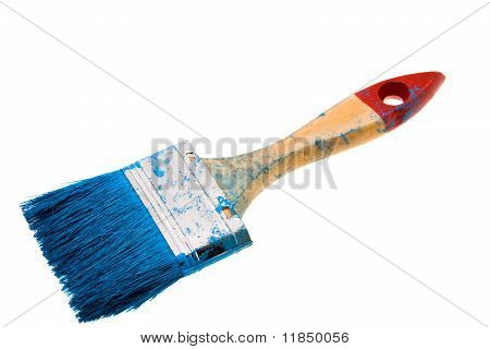 Brush in a paint
