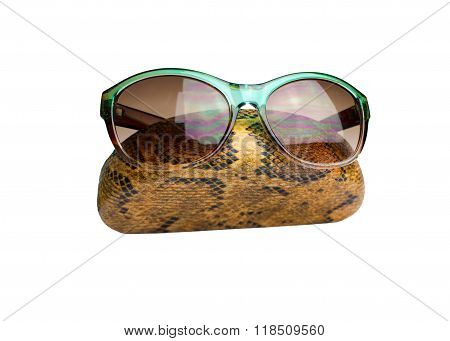 Sunglasses And Spectacle Case  Isolated On White