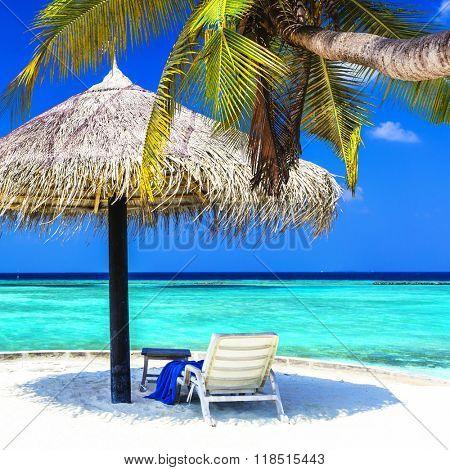 tropical getaway - Maldives islands