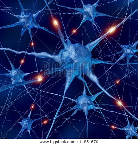 active neurons brain connections