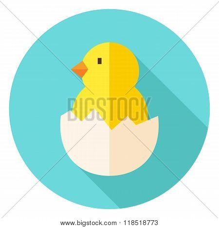 Hatched Chick In Eggshell Circle Icon