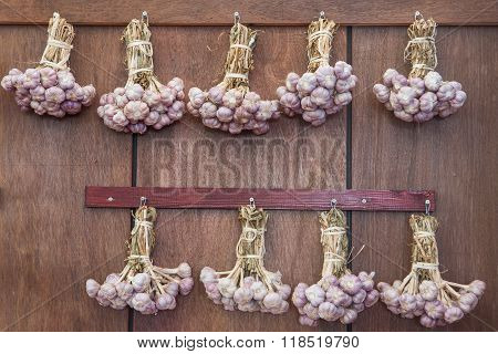 Common Garlic, Allium ,garlic, Allium Sativum
