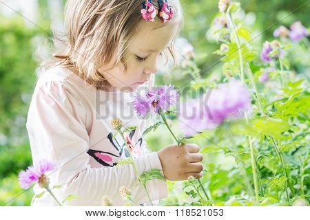 Pretty Toddler Girl Smelling A Flower