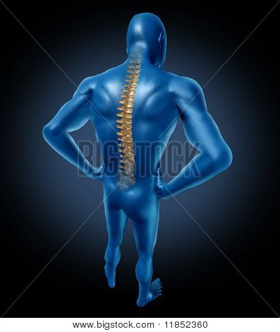 human back pain spine posture spine therapy