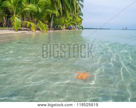 Beach in bocas del toro