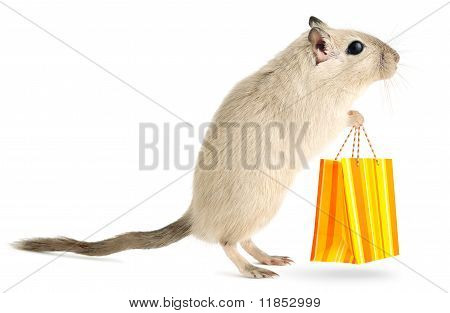 Cute Little Mouse goes shopping