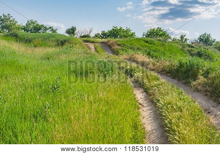 Earth road upward on a hill covered with spring herbs