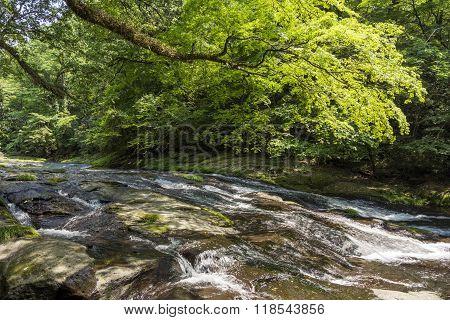 River flowing rock mass
