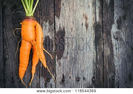 Ugly Carrot On Barn Wood