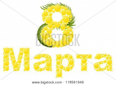 Yellow mimosa flower. Mimosa flower symbol of Womens Day. Congratulations on March 8. Russian text l