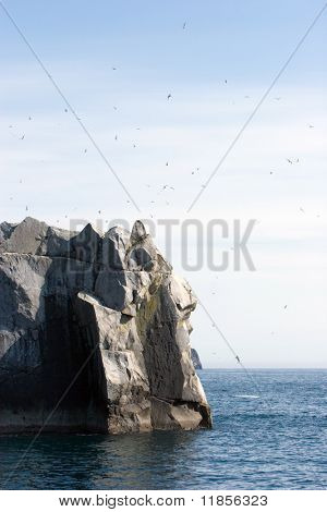 Birds flying over rock in the ocean