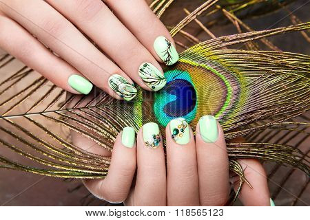 Art design manicure  with peacock feather on female hands. Close-up. Fashion nails.
