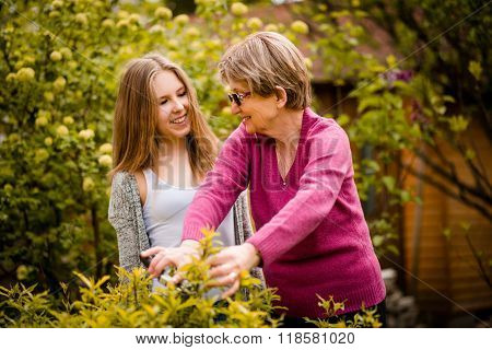 Grandmother teaches grandchild pruning