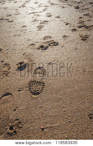 Imprints Of Shoe Soles In The Wet Sand