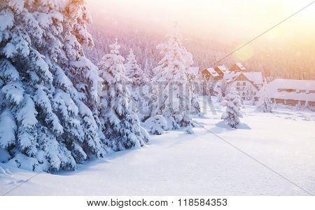 Beautiful landscape of a winter resort, little cozy houses near fir trees covered with snow, wintertime holidays in Alps, Europe